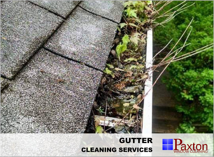 Gutter Cleaning - Clean Gutters prevent home damage